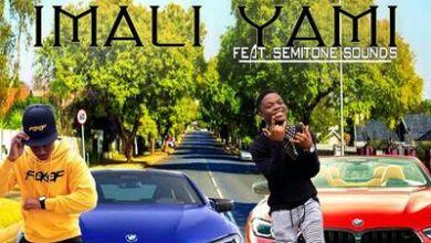 DJ Vox & Madrops – Imali Yami ft. Semitone Sounds