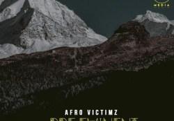 Afro Victimz & House Assassins – Construction