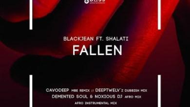 BlackJean – Fallen (Demented Soul & Noxious DJ Afro Mix) ft. Shalati
