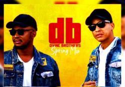 Dvine Brothers – Spring Mix 2020