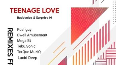 Buddynice – Teenage Love (TorQue MuziQ Afro Tech Mix) ft. Surprise M