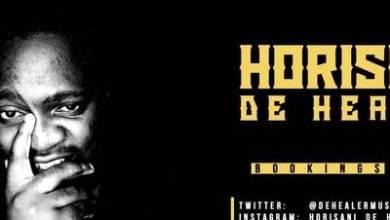 Horisani De Healer – December Exhibition Mix