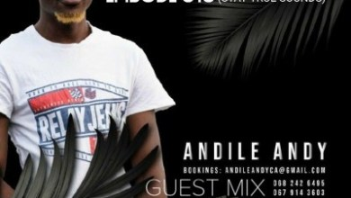 Andile Andy – DSS Episode 016 (Guest Mix)
