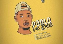 Pablo Le Bee – 30 Mins Mix January Edition (Clap & Tap)