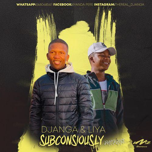 DJ Anga & Liya – Subconsciously Package Zip Download
