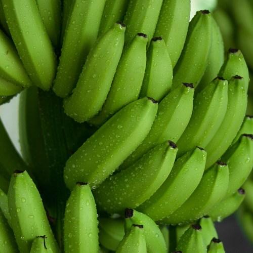 Nuestros Bananos