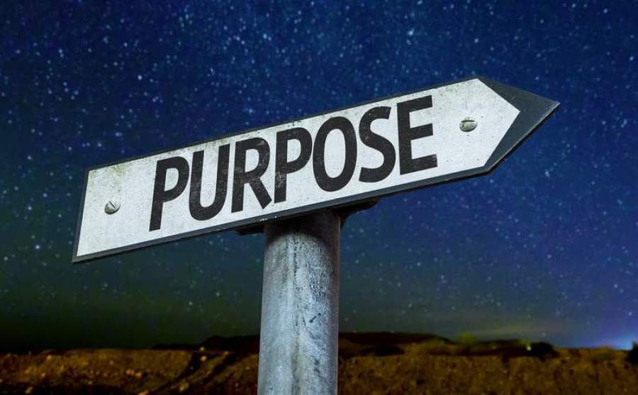 Purpose adds meaning to the life.