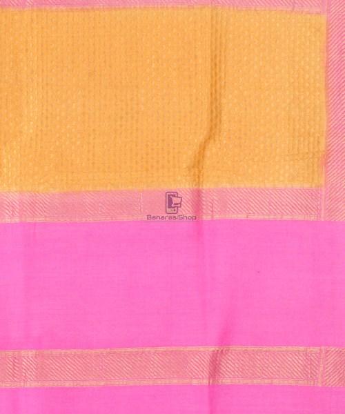 Pure Banarasi Muga Silk Handpainted Jaal Saree in Beige 7