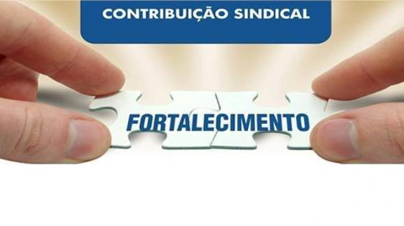 21150808_263867954114516_630950397_n