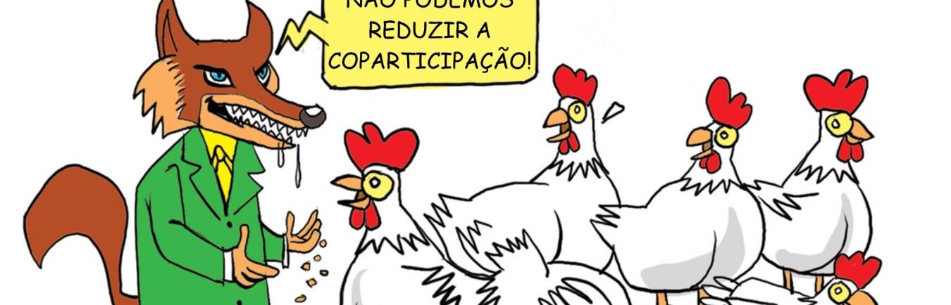 tag-flesch-manutencao-da-coparticipacao2
