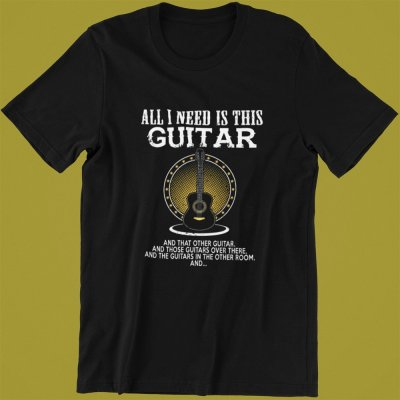 All-I-Need-Is-This-Guitar