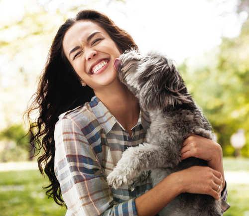 Breathing exercise, destress dog, diwali, stressed dog, calm dog
