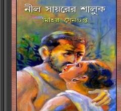 Nil Sayorer Shaluk- Mihir Sengupta ebook