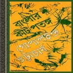 Banglar Kit-Patanga ebook
