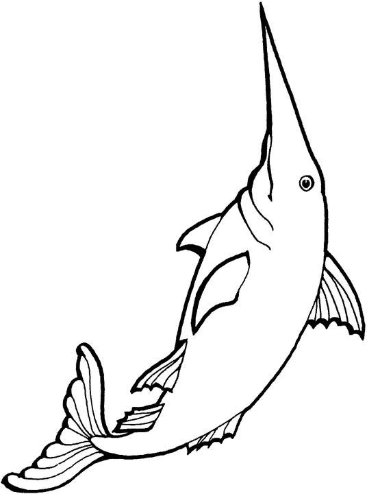 swordfish colouring pages page 2