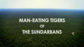 Man-eating-Tigers-of-the-Sundarbans-Cover