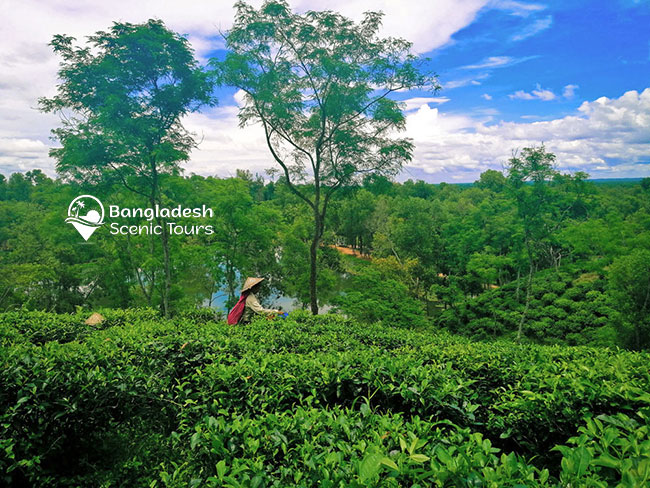best places to visit Bangladesh