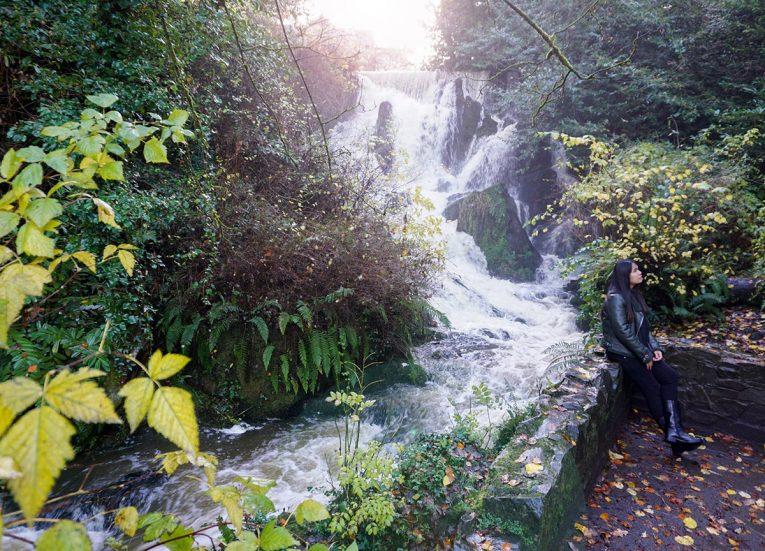 Waterfall and River, Crawfordsburn Country Park in Bangor Northern Ireland