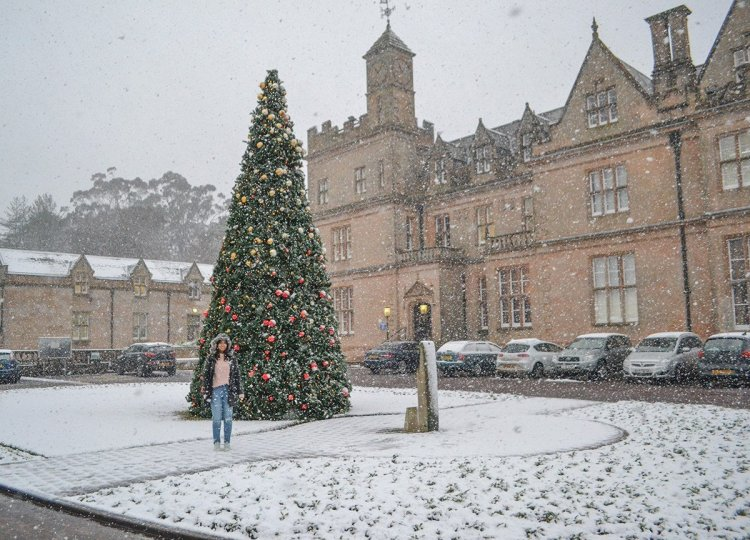 Bangor Town Hall in Snow, Traditions of Christmas in Northern Ireland, Bangor NI
