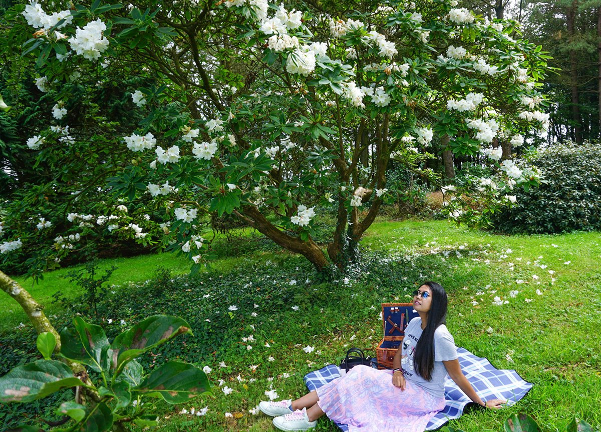 Picnic in Summer at Rowallane Gardens National Trust in Ballynahinch NI
