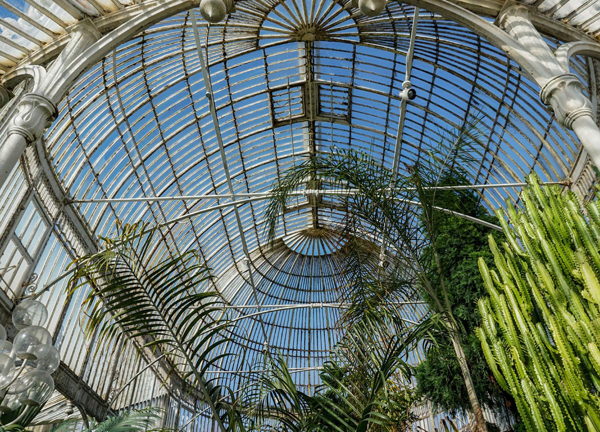 Glass Ceiling of Palm House in Botanic Gardens Belfast NI