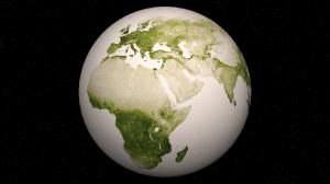 Herbal Earth