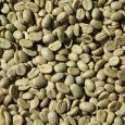 Coffee, the staple drink of millions worldwide, has had its secrets unravelled. The genome of the high quality coffee species Coffea arabica has recently been […]