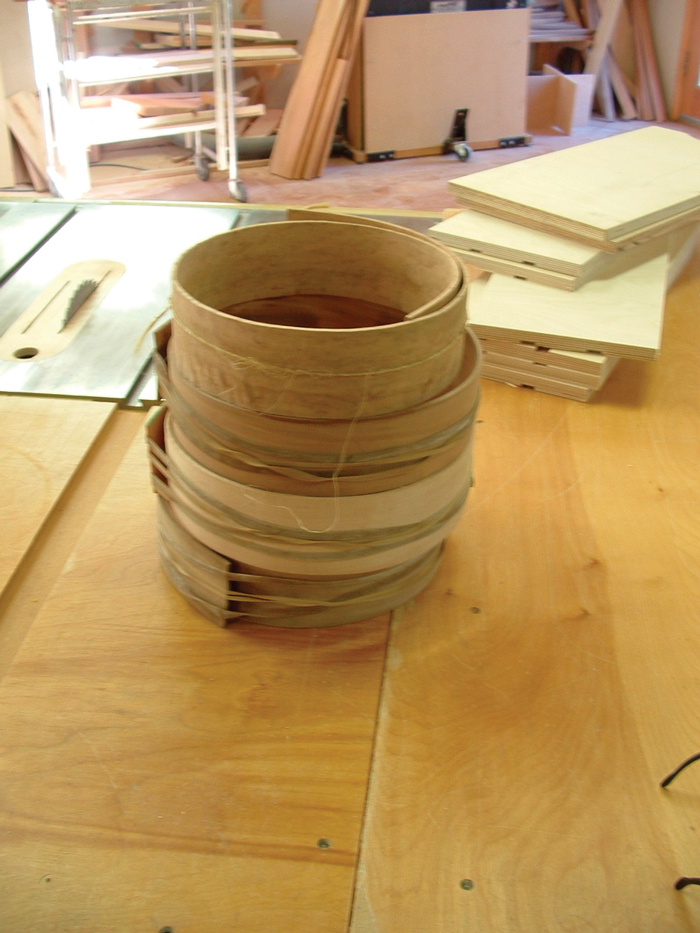 Bent wooden strips that will be used to make a banjo rim.