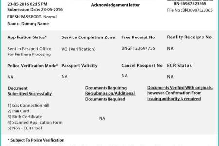 Free Forms 2018 Passport Renewal Form Free Forms