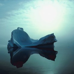 iceberg-87561047