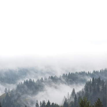 Foggy Mountains in British Columbia, Canada