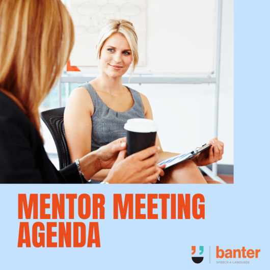 Mentor meeting agenda