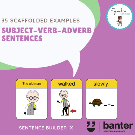 SVA Sentences