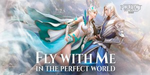 Portada del juego Perfect World