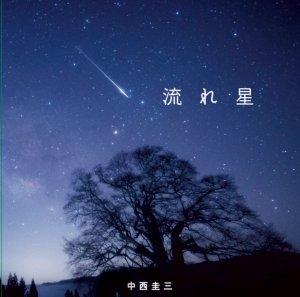 中西圭三『流れ星』ジャケット写真