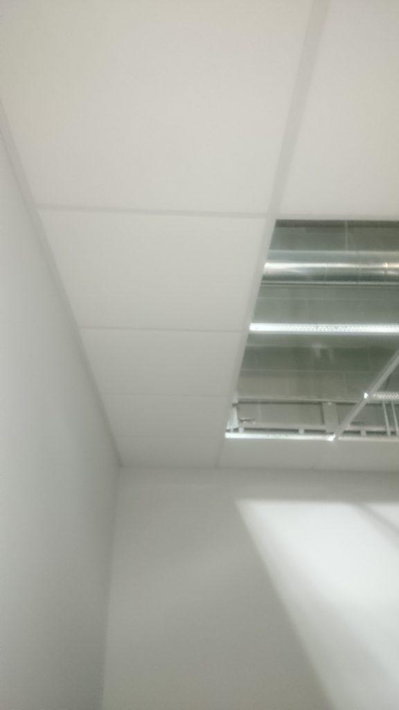 CEILING TILE IN TECH OFFICE
