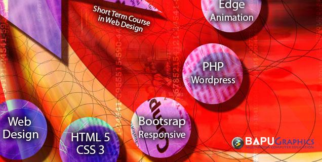 short term web design course in delhi