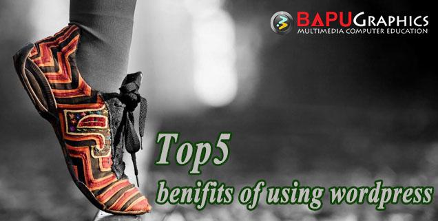 Top5 benifits of using wordpress