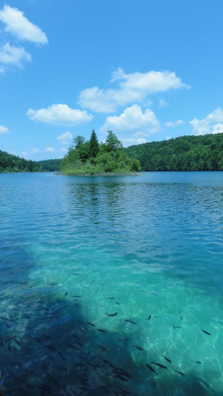 l'eau translucide des lacs où l'on voit des poissons