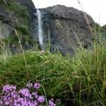 Cascade sur la falaise au sud de l'Île de Mull - Ecosse. - Blog Le Bar à Voyages