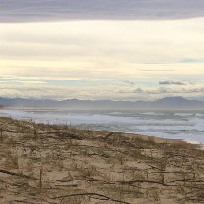 Dunes de Hossegor