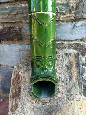 Turtugada verte à Collioure