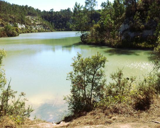 étang de la Charbonnière à Touvérac