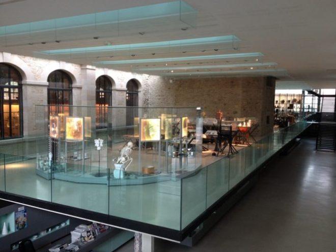 Musée Limoges