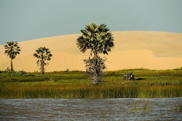 Les paysages très particuliers du littoral du Piauí ©Felipe Mendes