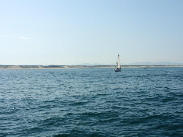 cote landaise - blog Bar a Voyages