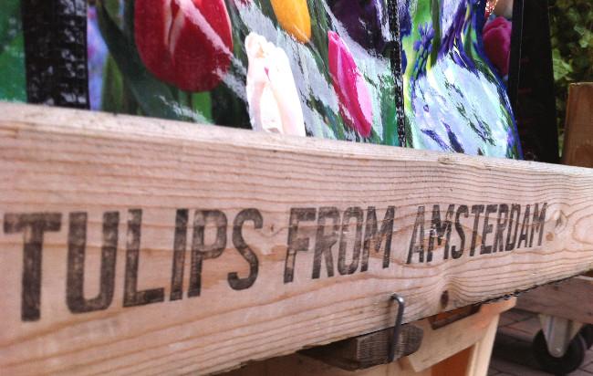 tulipes - blog Bar à Voyages