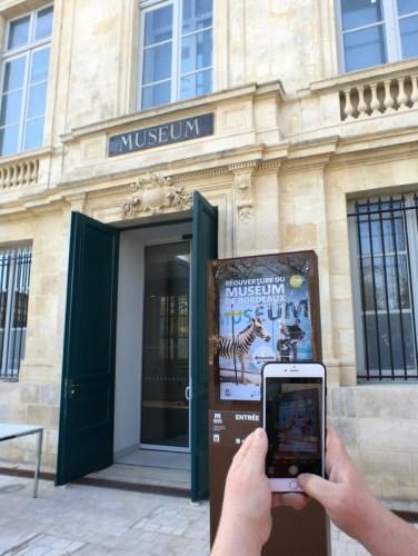 smartphone prenant une photo à l'entrée du Muséum de Bordeaux