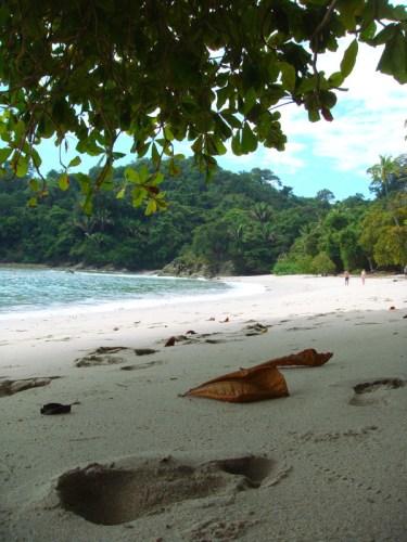 Une plage du parc Manuel Antonio pour se reposer pendant son voyage au Costa Rica