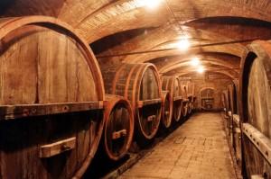 Il vino è prima di tutto una bevanda per appassionati